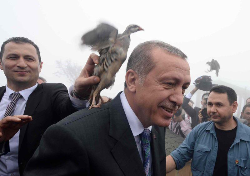 erdogan-k2