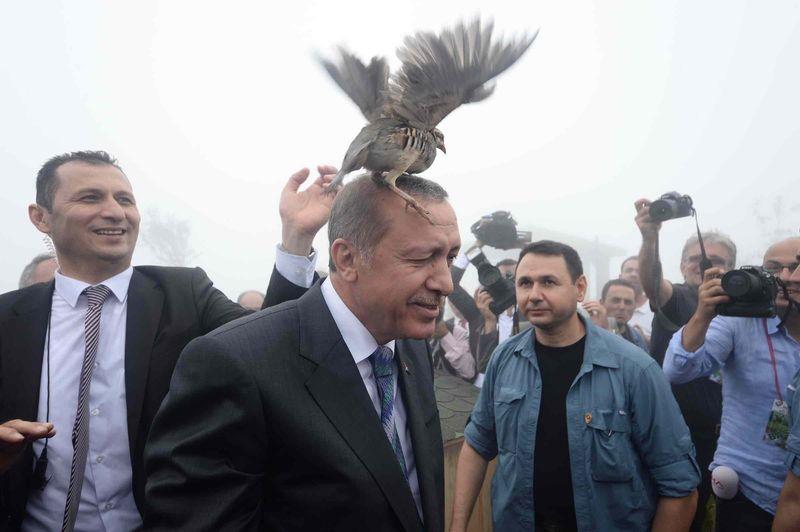 erdogan-k3