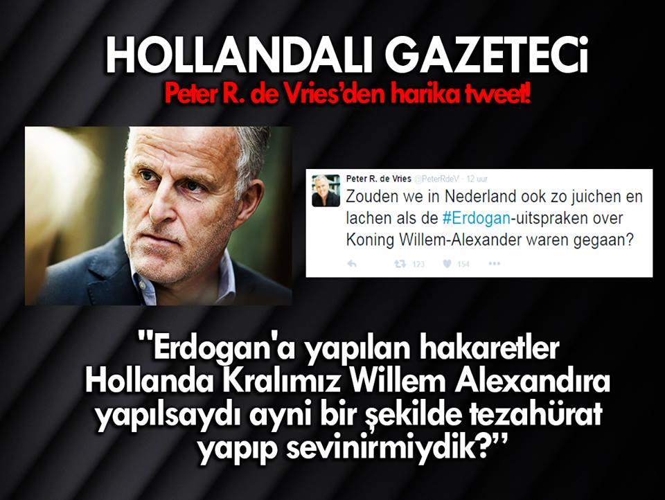 cb erdogan hakaret karikatur peterrdevries cevap